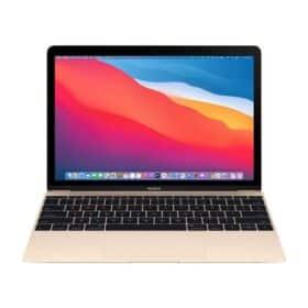 Estunt-Apple-MacBook-12-Gold